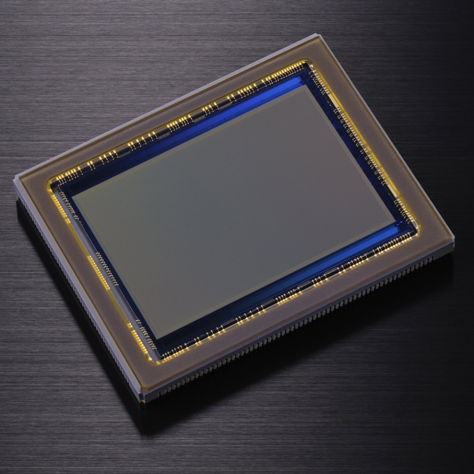 Sensor der Nikon D800
